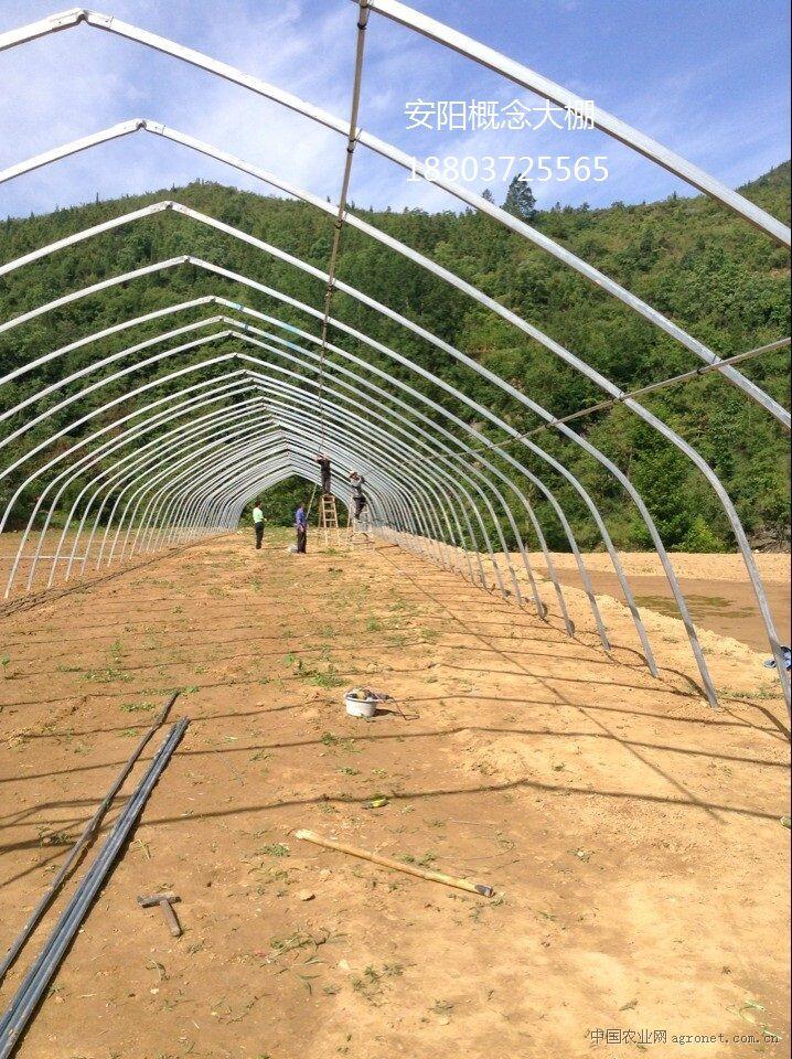 钢结构蔬菜大棚价格_温室大棚骨架钢结构大棚蔬菜大棚等价格信息