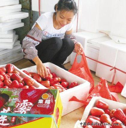 http://www.880759.com/zhanjiangxinwen/7212.html