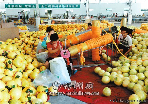 http://www.onsd.net/shishangchaoliu/87327.html