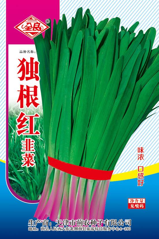 独根红韭菜种子