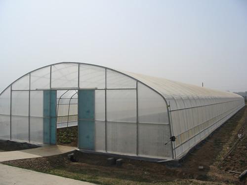 拱棚温室设计图
