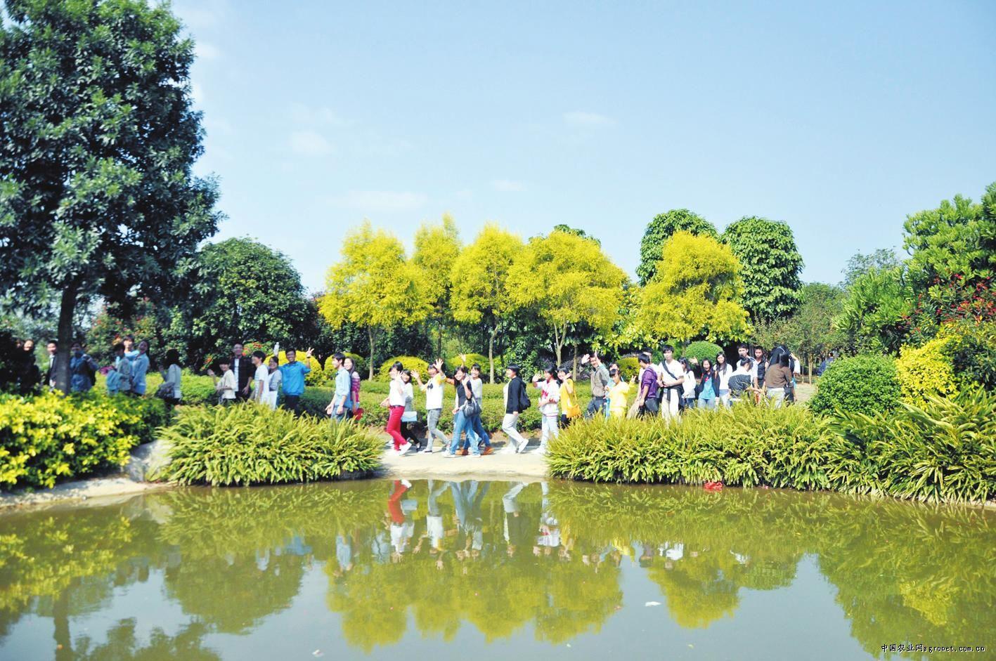 """廣西柳州園博園成""""植物博物館""""(圖)"""