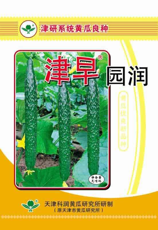 津早园润—黄瓜种子