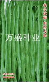万盛丰冠架豆王—豆角种子