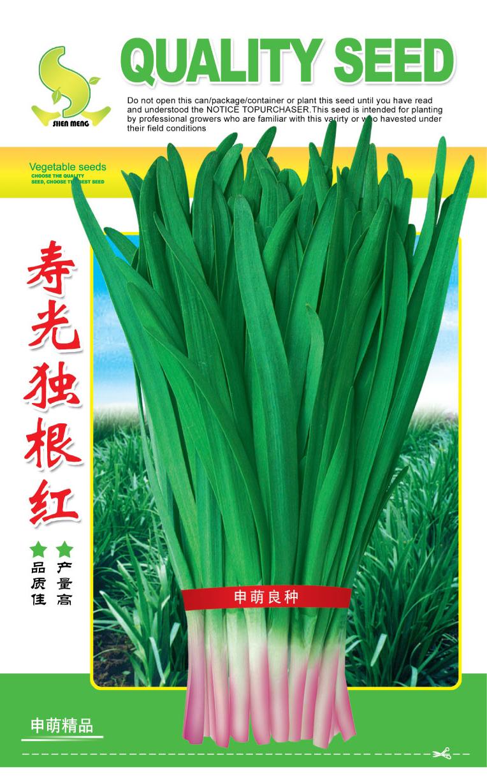 韭菜种子剖面图