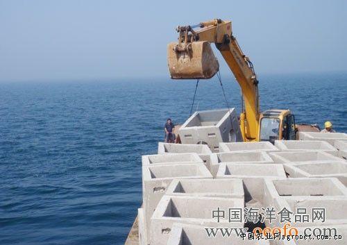 崂山湾海洋牧场已投放4175块礁体(图)