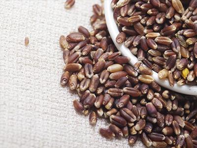 农作豆子手工制作