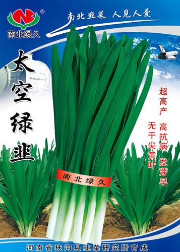 太空绿韭—韭菜种子