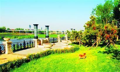 青岛:白沙河开启沿河绿色发展新篇章(图),农业技术,网