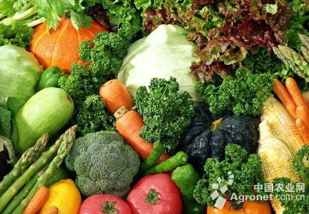 蔬菜内部种植结构进一步优化