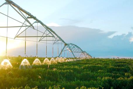 安徽寿县规模节水灌溉工程建设快速推进