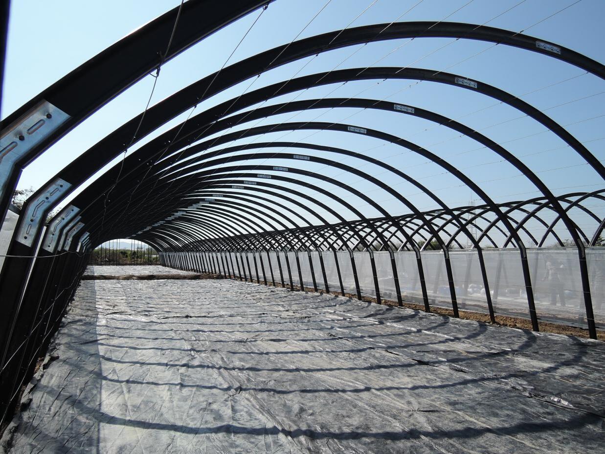 慧生 中国第一专业新型木塑农业大棚,温室大棚骨架生产厂家!