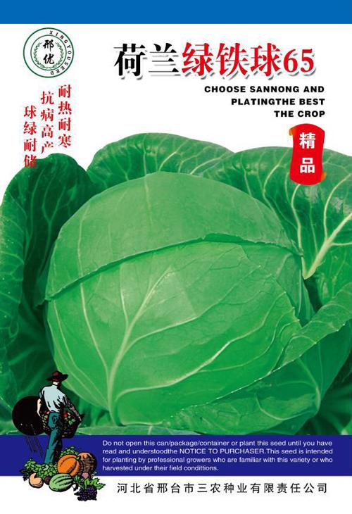 供应荷兰绿铁球65—甘蓝种子