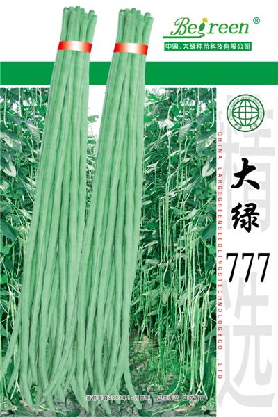 大绿777-豇豆种子