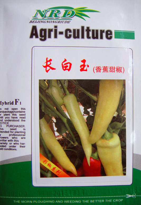 长白玉(香蕉甜椒)