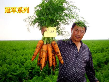 企业相册 - 幻灯片模式 - 北京圣农高科农业科技有限