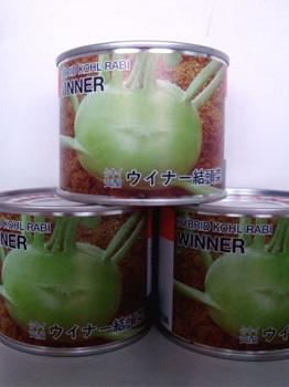 圣农水果苤兰—甘蓝种子