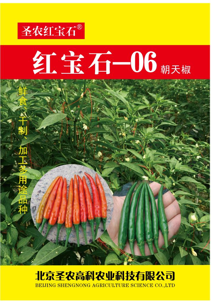 紅寶石06朝天椒