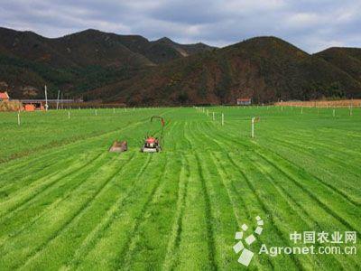 推进农业供给侧结构性改革