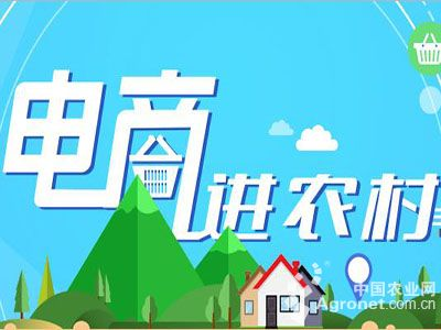 天津市全力推进农村电子商务发展(图)
