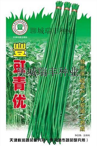 丰豇青优 --豆角种子