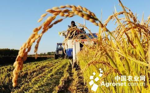 一是我国农业产业在世界竞争格局中仍处在产业链的中