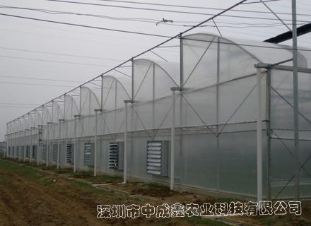 锯齿型连栋薄膜温室大棚
