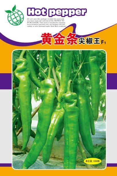 黃金條巨型尖椒王—辣椒種子