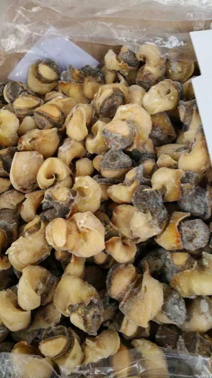 供应海螺头,海螺肉