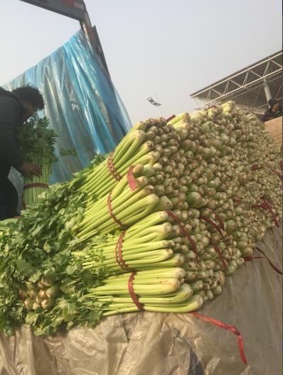 河北邯郸永年县南大堡蔬菜批发市场
