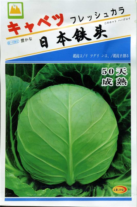 日本鐵頭-甘藍種子