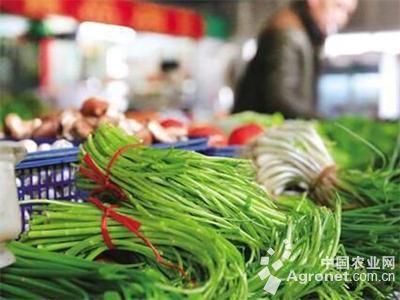 山东青岛:菜市场里春意盎然(图)