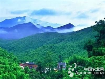 浙江杭州:用乡村旅游铺起发展之路(图)