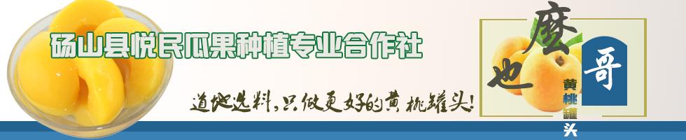 砀山县悦民瓜果种植专业合作社