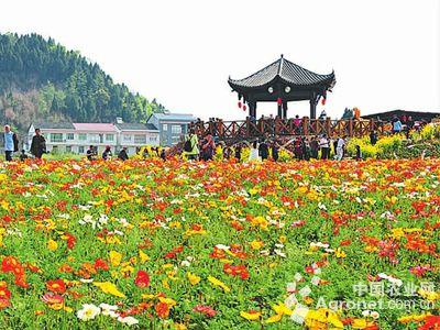 """旅游创意化的发展思路,正在建成长江经济带的""""最美乡村"""", 武汉城市圈"""