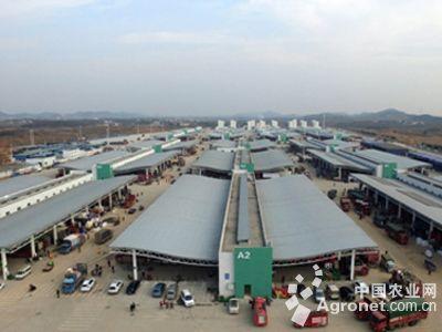 武汉海吉星农产品物流园开园(图)