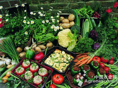 蔬菜立体手工图片步骤
