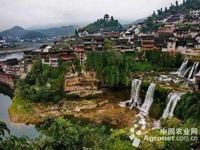 南宁打造特色小镇建设宜居乡村(图) ,农业资讯,中国网