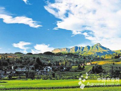 在那阳镇宝华山旅游风景区,宝华山圣种茶博园开展主题文化旅游活动等