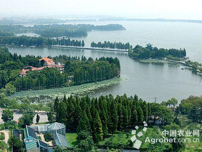 编制东湖绿心实施性规划;创新东湖风景区社会管理和景区运营的体制