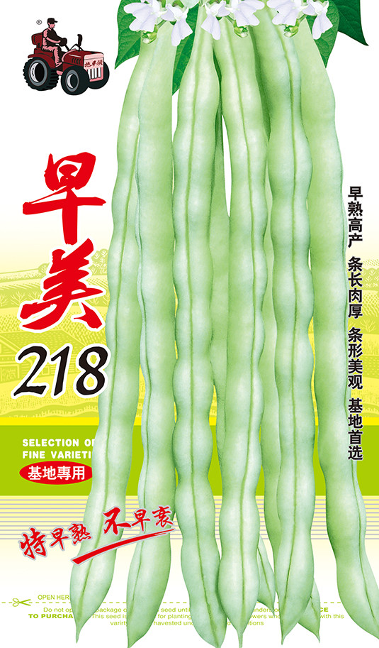 早美218——高产绿白条架豆系列