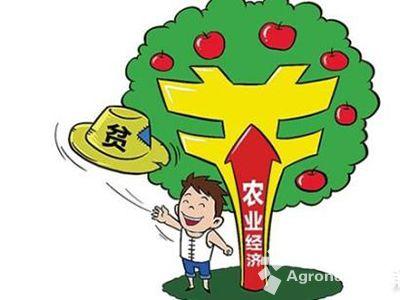 """中国农业网首页 农业资讯 国内综合 > 三亚小额贷款织出农民""""幸福网"""""""