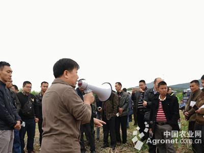 百色甘蔗生产机械化培训会在田东举行