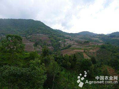 普洱澜沧县美丽乡村建设(图)