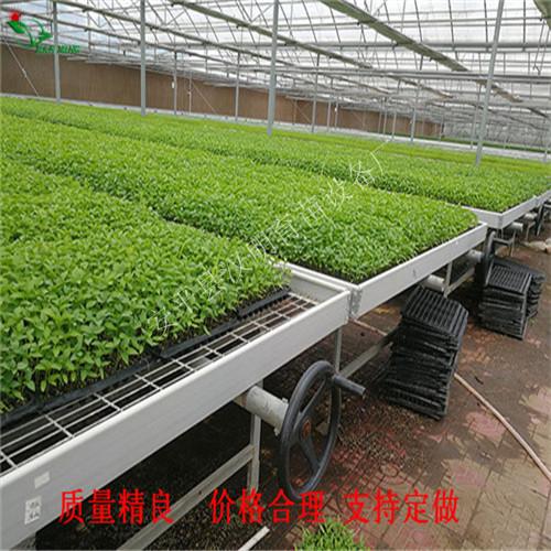 农用温室苗床