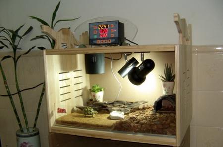 陆龟箱环境设计