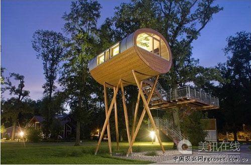 树上的小木屋baumraum
