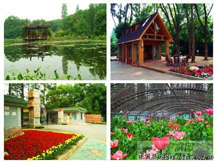 园林 工程案例 > 新加坡植物园  作品名称:新加坡植物园 设计单位: 作
