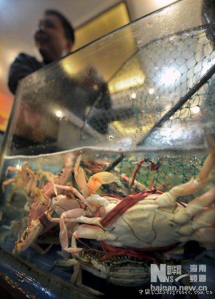 海南省海鲜交易市场螃蟹实行裸秤交易(图)