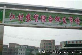 中国蔬菜网首页 > 批发市场名录  广州江村农贸综合批发市场  江村图片